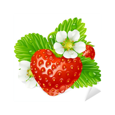 stickers-vector-strawberry-in-the-shape-of-heart-and-white-flowers